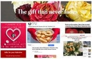 SAF Asks Companies, Publications to Reconsider Negative V-Day Ads