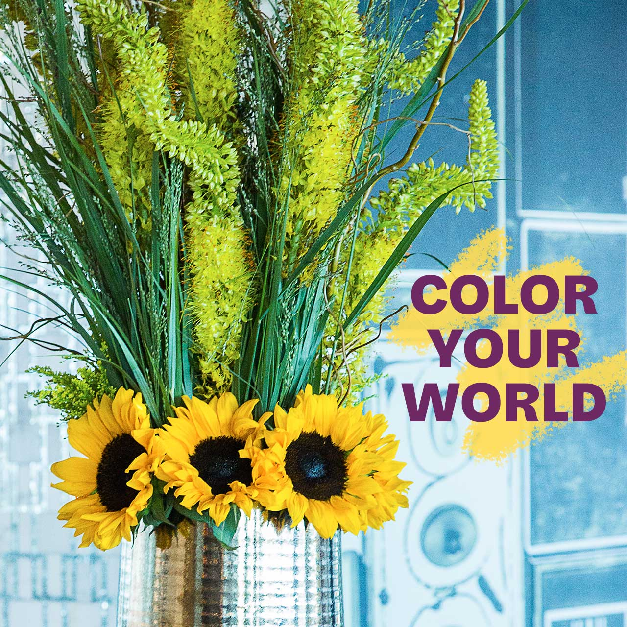 Color Your World