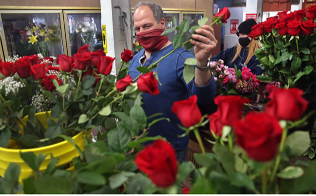 Valentine's Coverage Emphasizes Flowers' Emotional Power