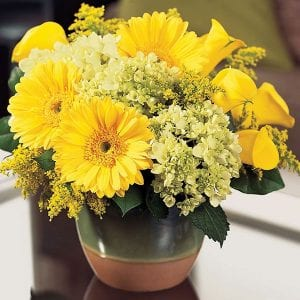 Get Well flowers and casual Easy living style